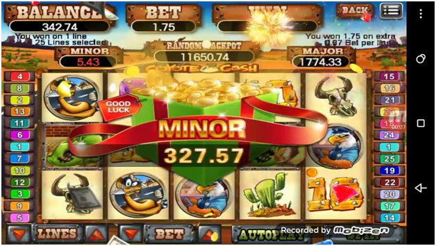 Coyote cash slot game