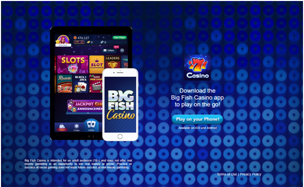 Big Fish Casino Mobile App